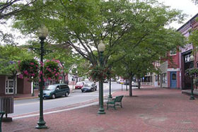 trees-Main St, downtown Amesbury