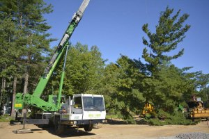 Royal Green Tree Service crane in action