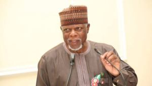 Customs seizes 34 containers of smuggled rice