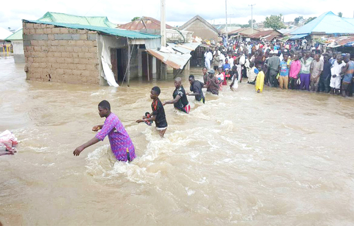 Flood: states govts not doing enough – FG