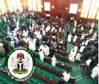 2023: We will do everything to ensure youth access political office –lawmaker