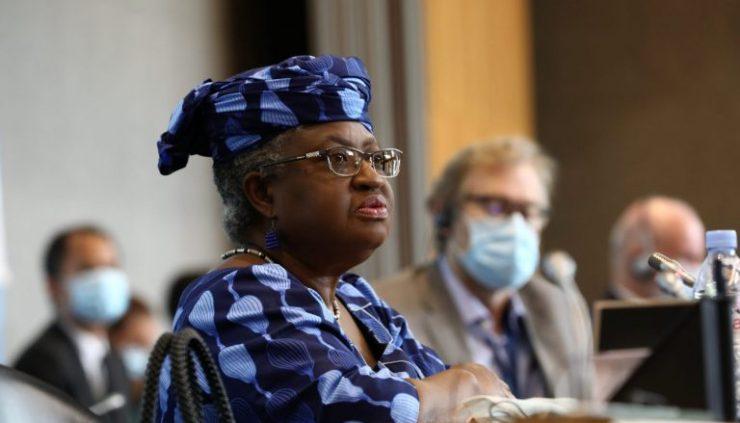 WTO Post: Trade expert tasks FG on intensifying diplomatic lobbying