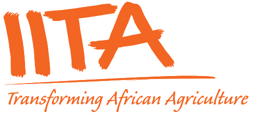 IITA, two others sign MoU to promote cassava seed system