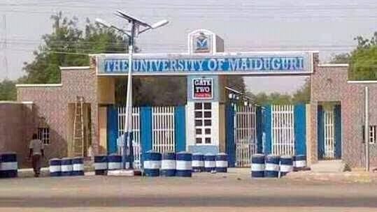 'Jobs for Sale' at UNIMAID allegedly for N1.5m