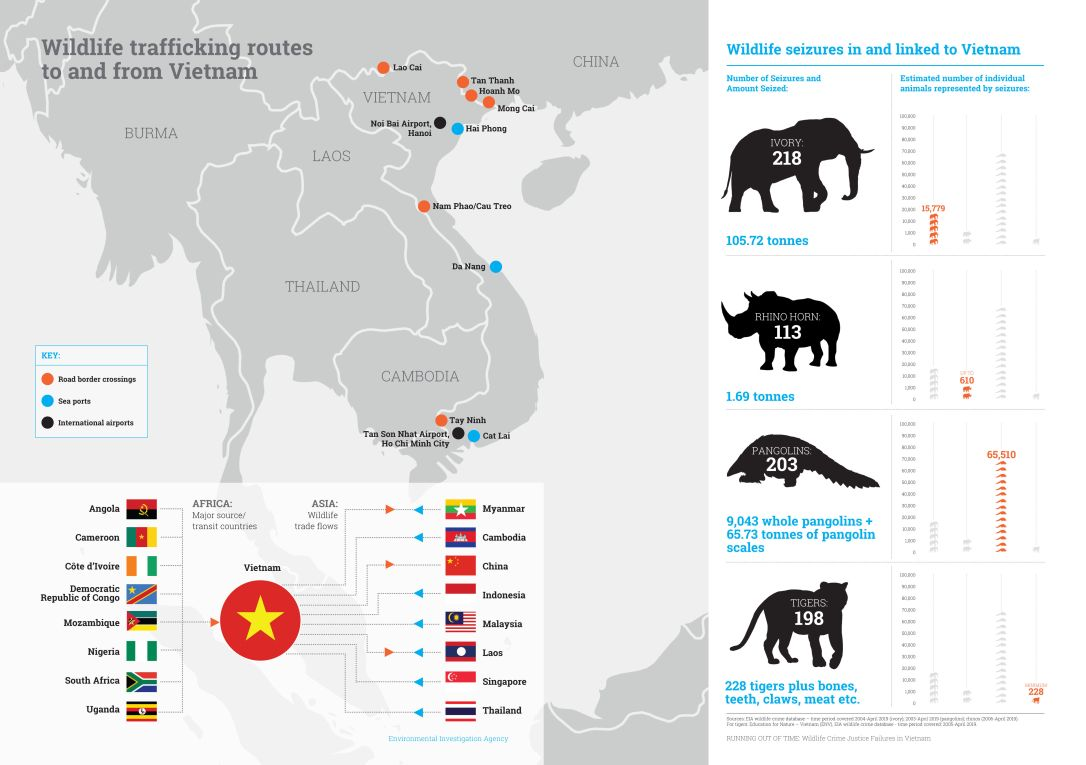 Vietnam-MAP__INFOGRAPHIC