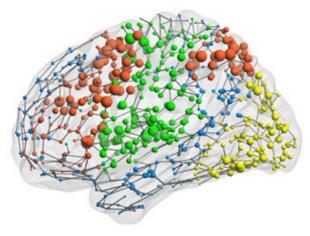 Functional imaging reveals statistical patterns of coordination between brain areas. (Copyright: Crossley N.A. et al., PNAS 2013 110:11583-8.)