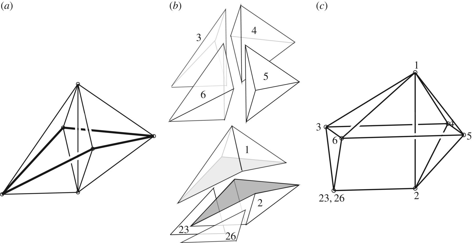 The Geometry Of Structural Equilibrium