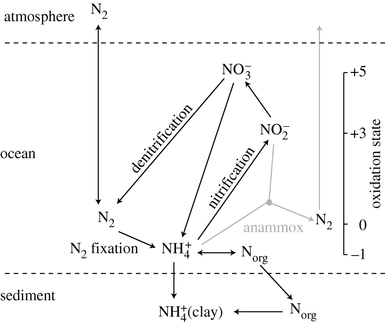 Electrons Life And The Evolution Of Earth S Oxygen Cycle
