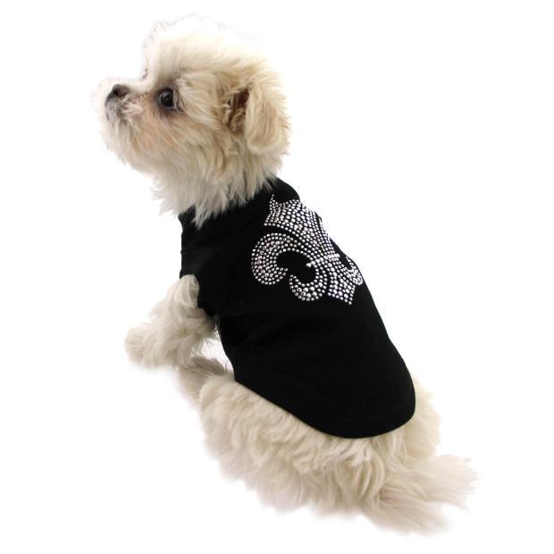 white Mi-Ki puppy wearing black shirt