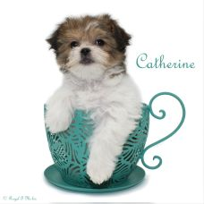Catherine-sm-teacup3-3-18