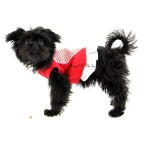 Denaya-Royal-T-Mi-ki_puppy-for-sale_Colorado