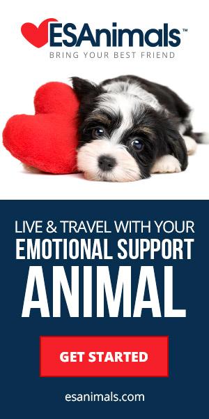 travel-with-your-Mi-ki_Dog_emotional-support-animal