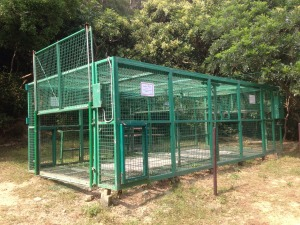 Cages to capture macaques in controlling population