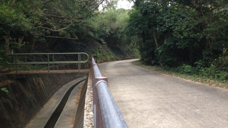 Catchwater and Service Road, Stage 11, Lantau Trail