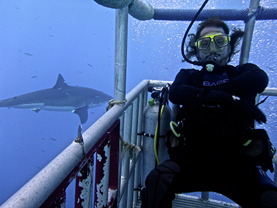 Sharkdiving in Mexico!