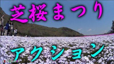 富士日帰り芝桜まつり