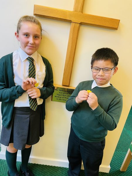 Our House Captains have been selected…