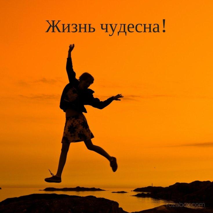 жизнь чудесна