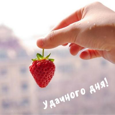 открытка удачного дня!