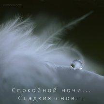 открытка спокойной ночи сладких снов