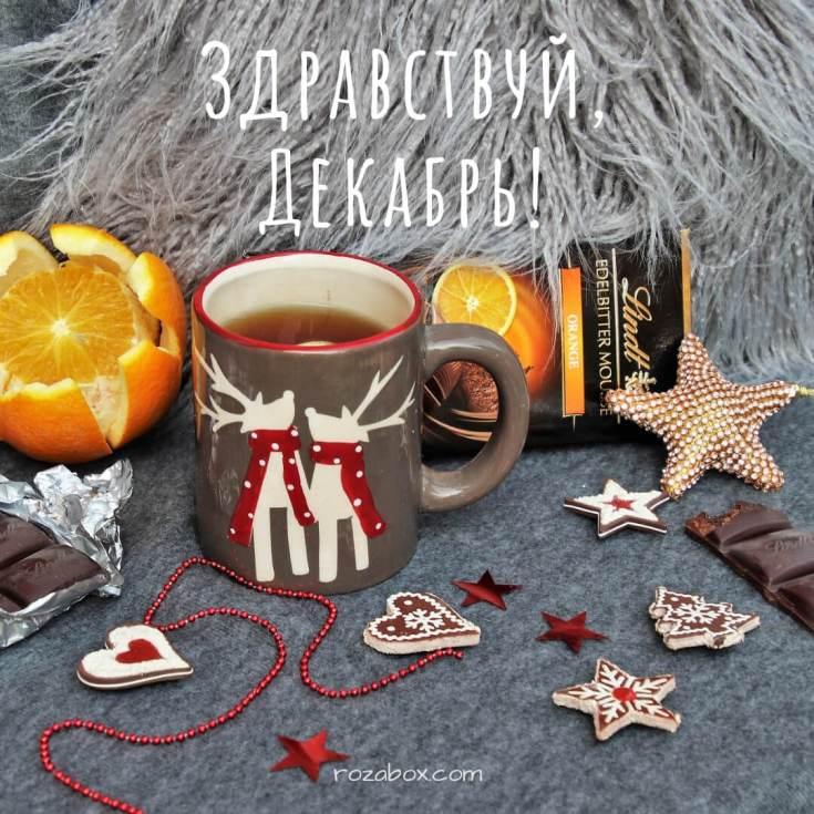 здравствуй декабрь! милая фотография