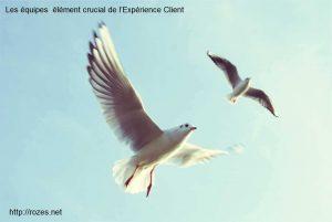 Les équipes élément crucial de l'Expérience Client - http://rozes.net
