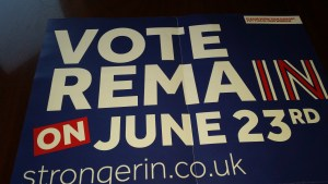 Vote Remain 002