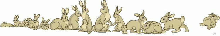 a_bunch_of_bunnies_by_lyosha
