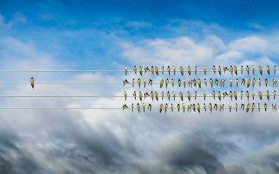 Creatividad que genera vida – Ana Guerrero