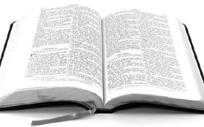 Diferentes modos de rezar con el evangelio 2 – Camilo Llorca