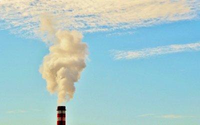 Primera ley estatal de cambio climático – Biotropía