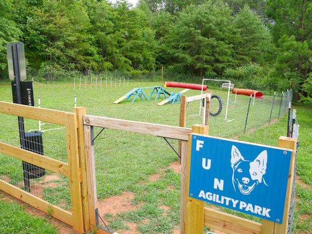 4 paws kingdom agility park