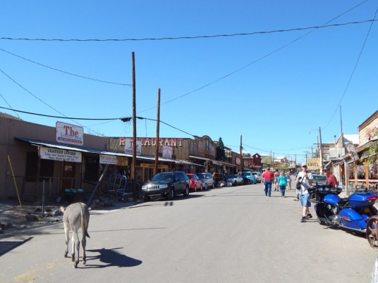 Main Street, downtown Oatman. Notice free-roaming donkeys and tourists mingling among each other.