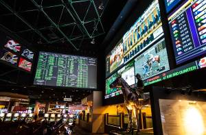 Westgate Sportsbook Las Vegas Horse with large screens displaying sports bets