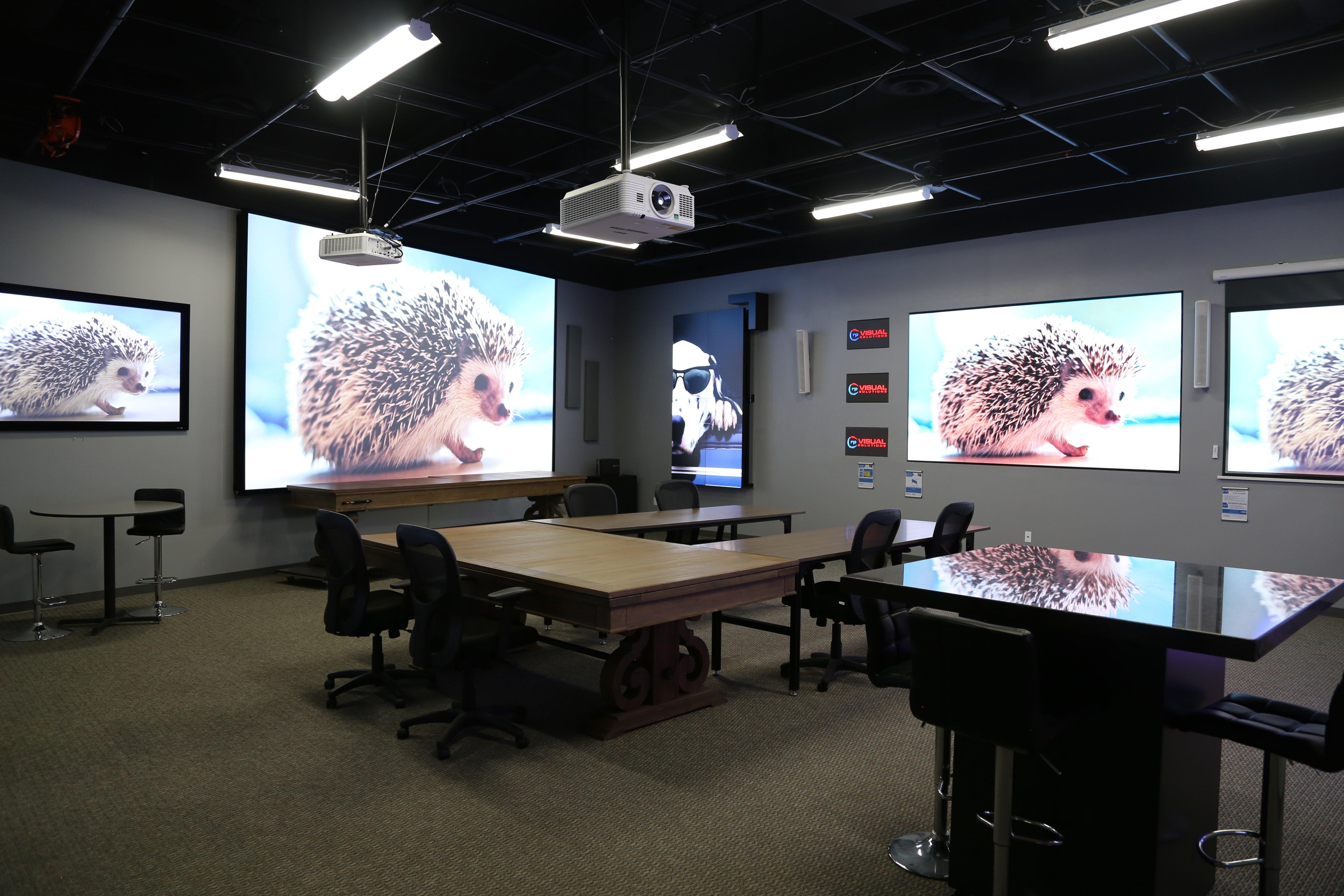 RPV Visualization Centre