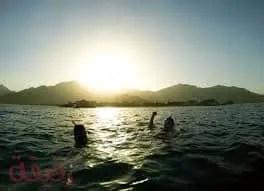 تفسير حلم السباحة في البحر لابن سيرين وكبار المفسرين مجلة