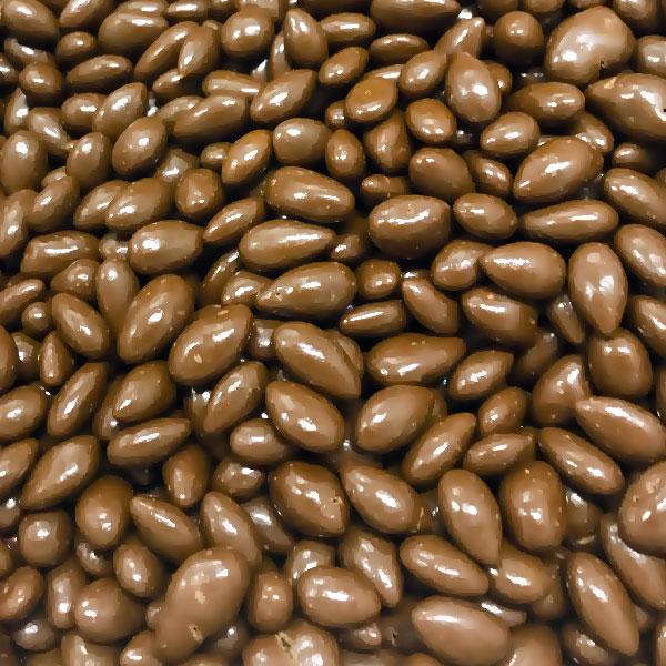 Milk Chocolate Coated Sunflower Kernels