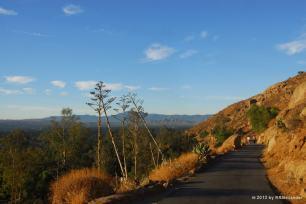 Mt Rubidoux 11-3-2009 DSC_2617 WP