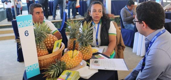 Plataforma comercial conecta productores rurales con exportadores
