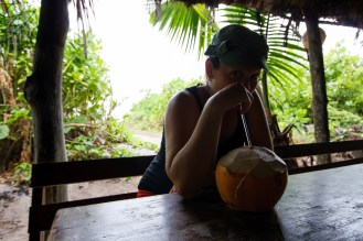 Molly enjoying the coconut while waiting out the downpour