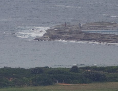 0830: pretty unimpressive offering this morning at Dee Why.