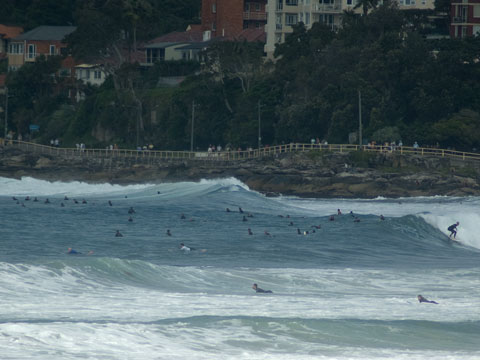 Mild, some swell and Sunday adds up to very crowded.
