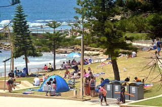 Crowded on the grass at Dee Why