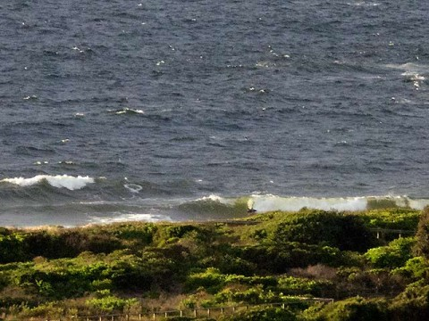 Bodyboarder snags section