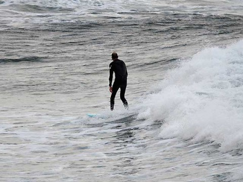 surfer at collaroy beach
