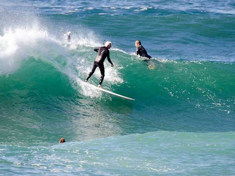 dee why surfer