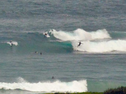 surfer falls off at dee why point
