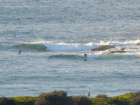 dee why point surf