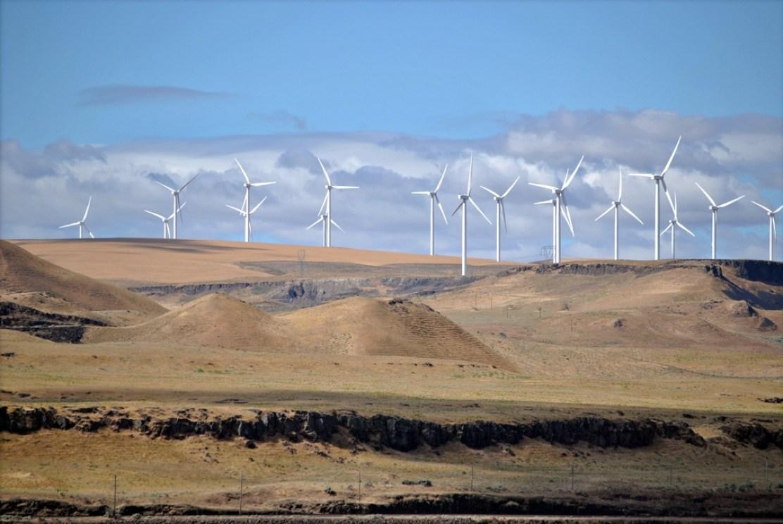 Shepherds_Flat_Wind_Farm_2011