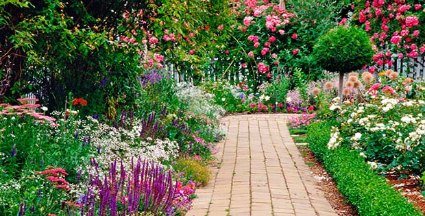 Siembra un jardín